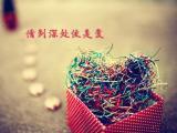 情到深處便是愛