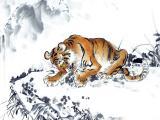 中国画老虎