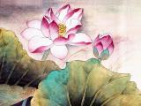 中國風荷韻