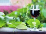 純美葡萄酒