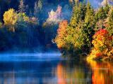 秋季清晨薄霧