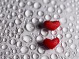 心与心的约会