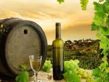 葡萄與美酒
