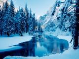 唯美雪天美景